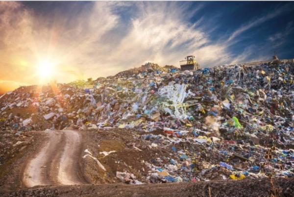 """垃圾分类 生活垃圾,见""""圾""""行事丨扔一件垃圾有多难?"""